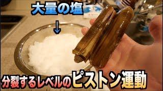 マテ貝を大量の塩の中にぶっ刺したらピストン運動が激しすぎて体が・・・