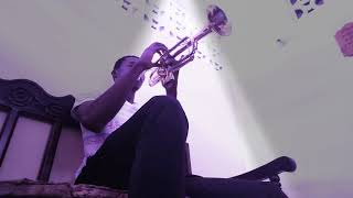 If I ain't got you  (Alicia keys) cover trumpet