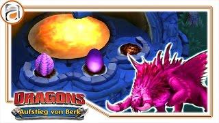Dragons Aufstieg von Berk | Die legendären Drachen auf Berk | [HD+] #894