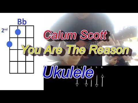 Calum Scott You Are The Reason Ukulele
