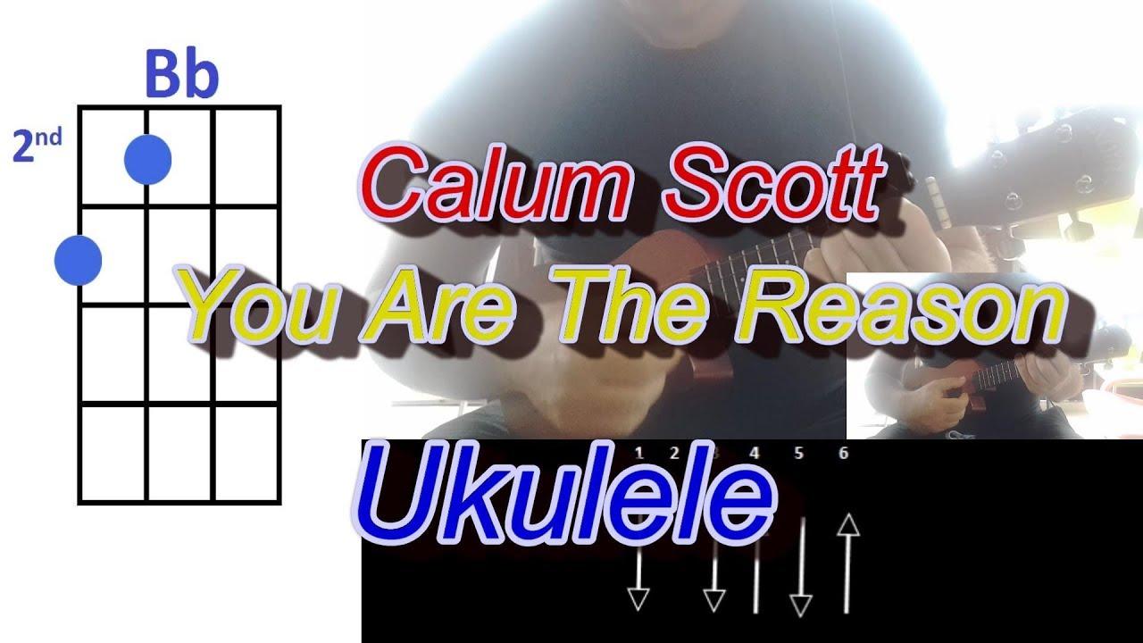 calum-scott-you-are-the-reason-ukulele-max-ukulele