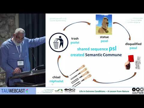 The Time-Proof Consistency of Creating Semanic Fields in Hebrew