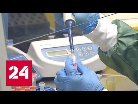 Российские ученые создали экспресс-тест на выявление коронавируса - Россия 24