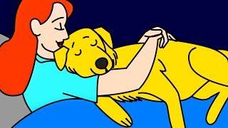 """11 Anzeichen wie dein Hund zu dir sagt """"Ich liebe dich"""""""