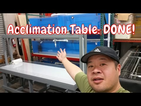 DIY Tropical Fish Acclimation Table is DONE