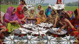 most tasty amp expensive fish fest for full village people hilsa elish fish curry cooking