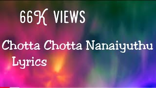 Chotta Chotta Nanaiyuthu சொட்ட சொட்ட நனையுது song with Lyrics from Taj Mahal movie
