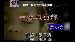 蔡小虎-一生只有你(官方KTV版)