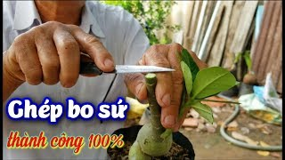 How To Pair Thai Porcelain Beautiful Flower With 1 Tree | THAI CHINH
