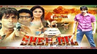 SHERDIL - Full Length Action Hindi Movie