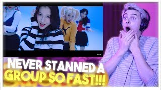 MOMOLAND (모모랜드) - BBoom BBoom (뿜뿜) MV Reaction!! [NEVER STANNED A GROUP SO FAST!!!]