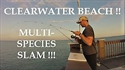 Clearwater Beach FISHING (Florida 19' Part 2)