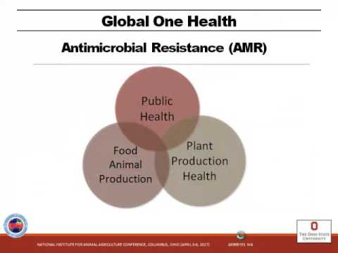 Dr. Wondwossen A. Gebreyes - The Role of Global One Health Capacity in Global Food Systems