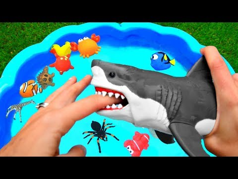 Wild Sea Animals Toys Baby Mom Learn Animals Names Education Toys for Kids
