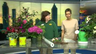 Gardening With Gurvir Tips For Changing Weather