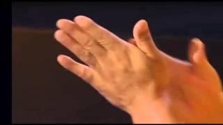 Massage Chinois (techniques avancées) • Ellebore • Le visage • Par Li Xuejun