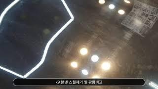 k9 스월기스제거 및 …