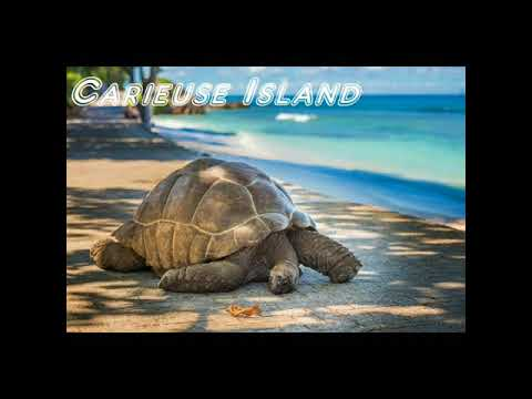 SEYCHELLES with STAR TOURISM