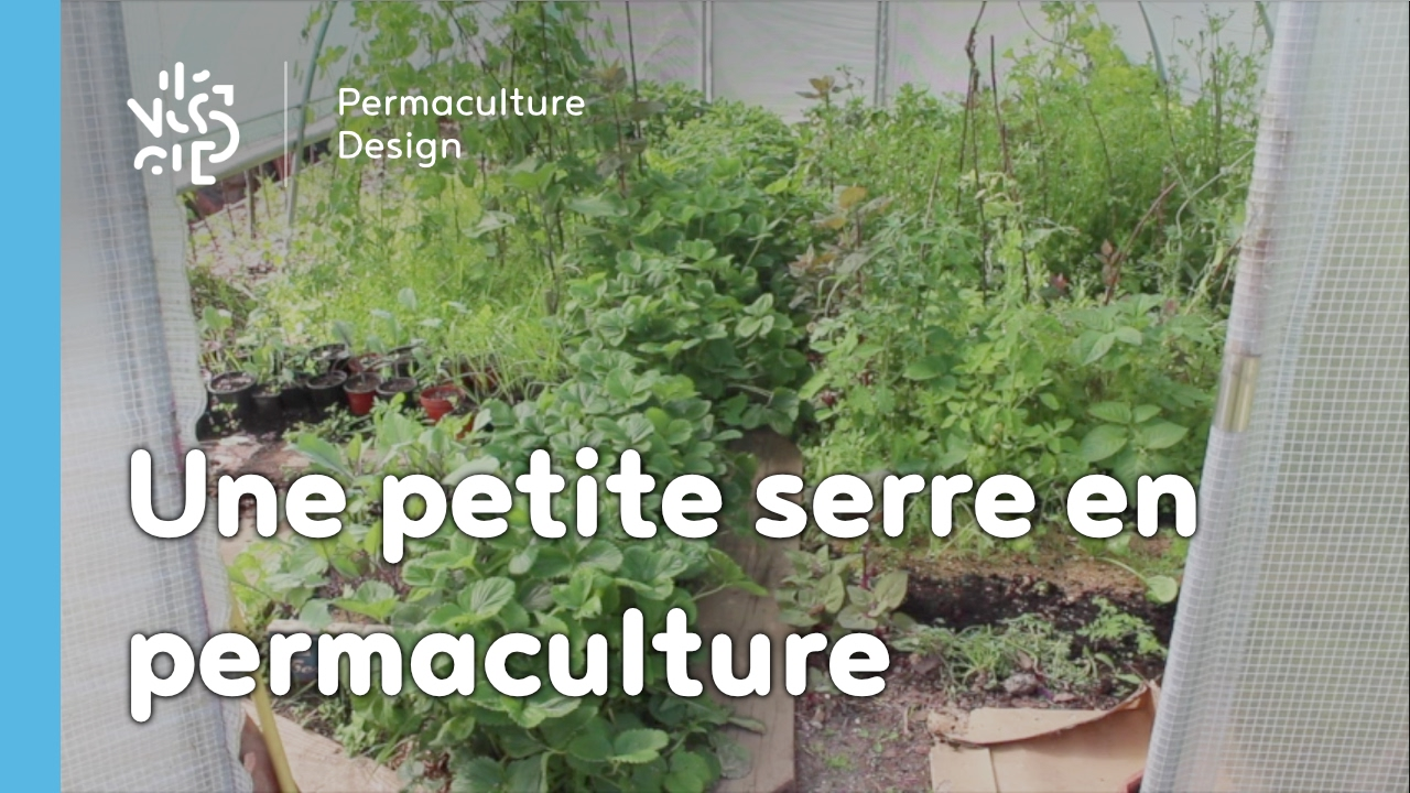 une petite serre am nag e selon les principes de permaculture youtube. Black Bedroom Furniture Sets. Home Design Ideas