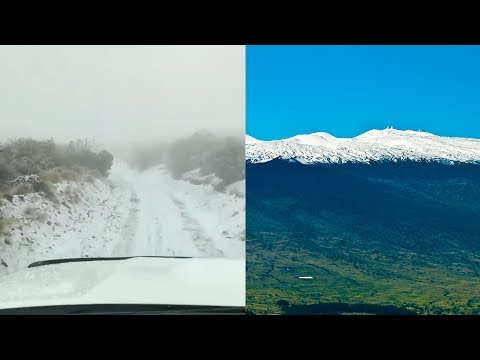 Christie James - Did You See The Snow In ....MAUI?