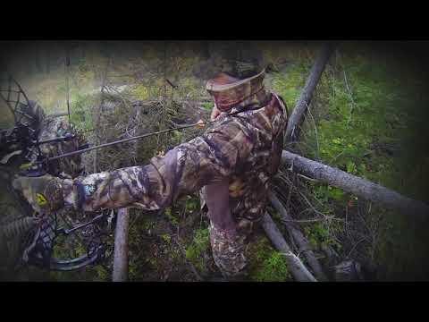 Moose Hunt With Decoy