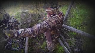 Охота на лося на реву с луком 2019