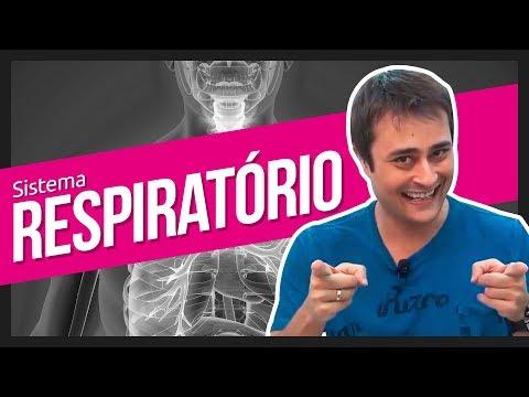 Sistema Respiratório   Prof. Paulo Jubilut