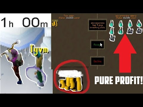 1 Hour of WYVERN RUNNING! WTF THIS ACTUALLY MAKES BANK?! - Oldschool 2007 Runescape