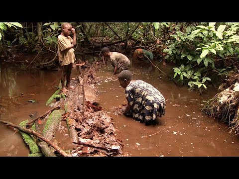 Fishing Trip With Pygmy Hunter-gatherers