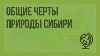 Общие черты природы Сибири. Видеоурок по географии 9 класс