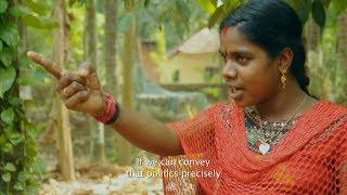 3D STEREO CASTE -a Documentary