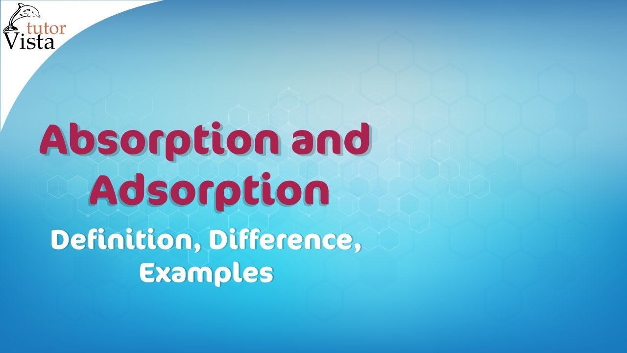 Absorption And Adsorption Definition Difference Examples Youtube