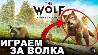 СИМУЛЯТОР ВОЛКА в MMORPG ?! :D - The Wolf