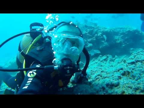 Porto Santo Diving (with Rhea Dive)
