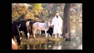 Sant Ba Darshan Singh Ji Dhakki Sahib Wale - Kirtan Gurmat Updesh