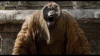"""А ну стоять, Маугли! - """"Книга джунглей"""" отрывок из фильма"""