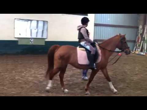 Amandine à cheval