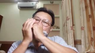 ĐÀ LẠT HOÀNG HÔN. ( Minh Kỳ & Dạ Cầm ) - Hòa tấu Harmonica .