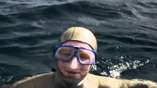 Tanya Streeter - BBC Tauchen mit Walen (Teil 5)
