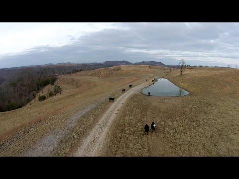 UK Extension Fosters Unique Farming Atop Reclaimed Strip Mine