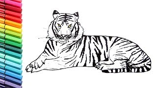 Drawing and Coloring a Tiger - How to Draw Wild Animals Color Pages for Children