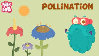 Parts Of A Flower And Pollination | The Dr. Binocs Show | Learn Series For Kids