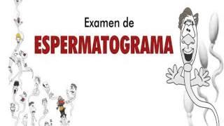 Examen De Espermatograma