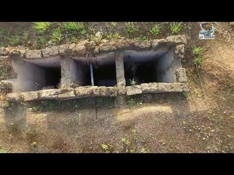 Βοηθώντας τον Stephen G.Miller να ανακαλύψει τον Ιππόδρομο της Αρχαίας Νεμέας.  Racecourse of Nemea