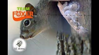 Squirrel Control #5 + Bonus