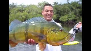 CRISTIAN VANEGAS Pesca Tucunare o Pavón, River MATAVENI Fishing Peacock Bass in Colombia
