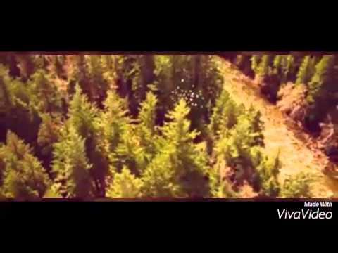 Trailer do filme Aconteceu Assim