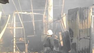 Рятувальники ліквідували пожежу у смт. Затока масштабне загорання на базі відпочинку(15 серпня о 05:04 до служби «101» міста Білгород-Дністровський надійшло повідомлення від директора фірми «Рута»..., 2013-08-15T09:15:00.000Z)