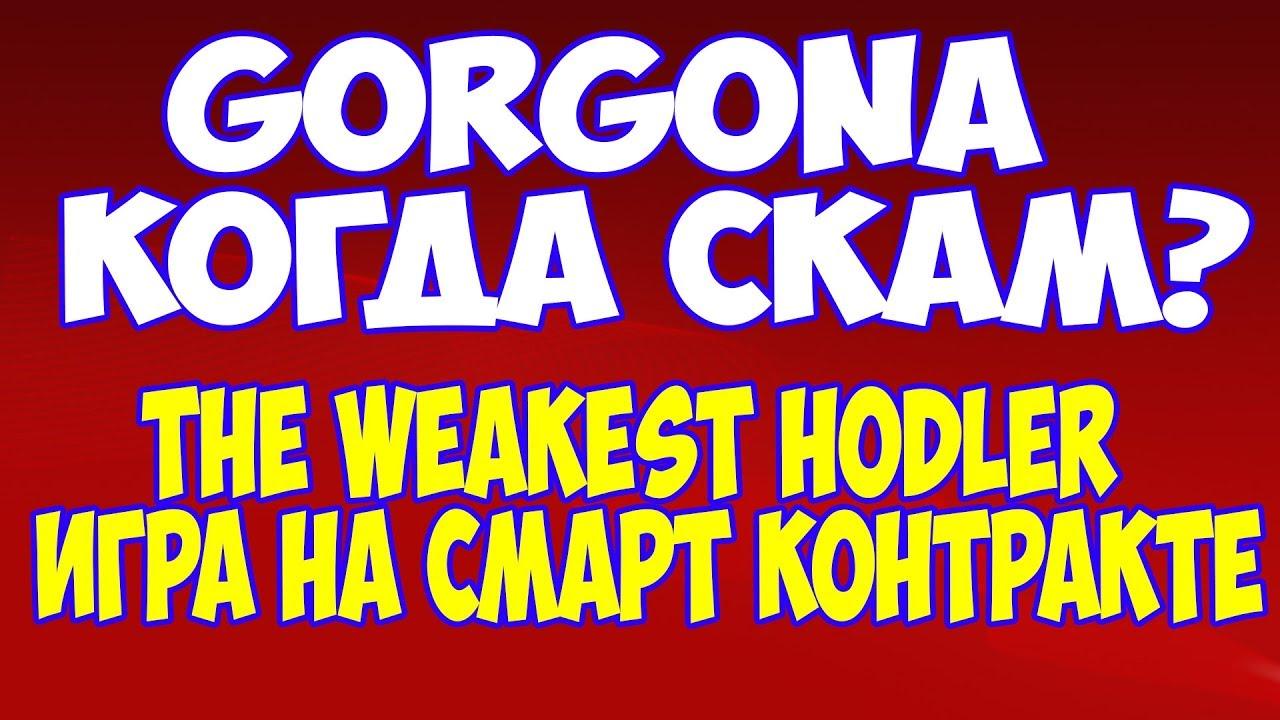 Новости о пирамиде на смарт контракте Gorgona. Рассказываю сколько