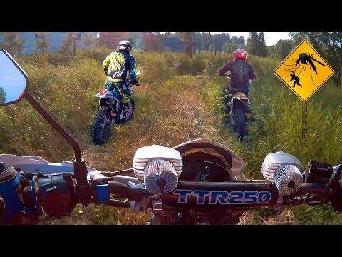 Покатушка, в Ебеня без навигатора! Yamaha TT-R 250, Suzuki RMX 250, Irbis TTR 250